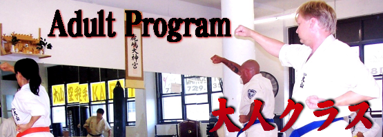 astoria adult karate