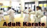 Adult karate NY