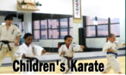 children karate NY
