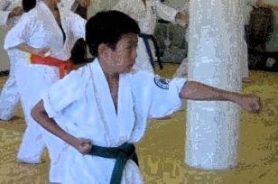 Ren Oyama Karate